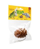 RIO Лакомство для птиц Шишка кедровая