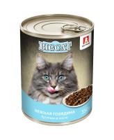 Зоогурман Big Cat консервы для кошек кусочки в желе, Нежная говядина 350г