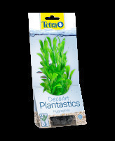 Tetra Растение аквариумное Hygrophila с утяжелителем