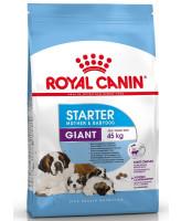 Royal Canin  Giant Starter Корм для щенков гигантских пород в возрасте до 2мес
