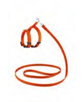 """Saival Classic """"Колор"""" Комплект для кошек поводок+шлейка, Оранжевый"""