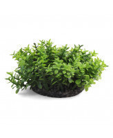 Triol Растение аквариумное пластиковое Микрантемум, 3 ветки, 50мм