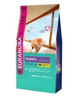 Eukanuba Puppy Toy Breed корм для щенков миниатюрных пород в возрасте от 1 до 12 месяцев 500г
